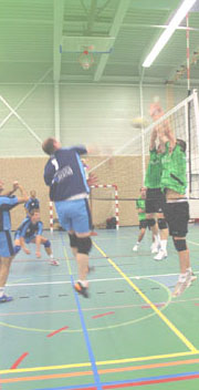 Volleyball in Rotterdam